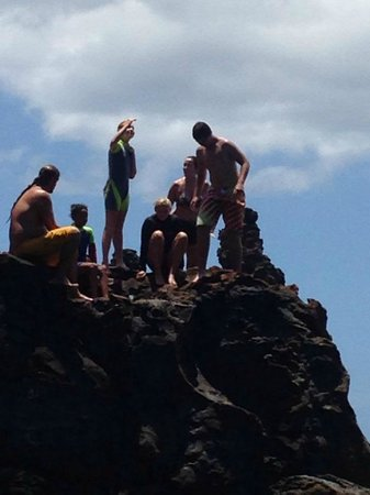 Ultimate Whale Watch : Cliff jumping