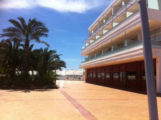 Servigroup Marina Playa: Terraza  hotel