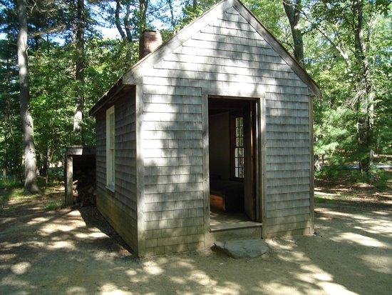 Walden Pond State Reservation : Replica Cabin at Walden Pond 2 8/8/2014