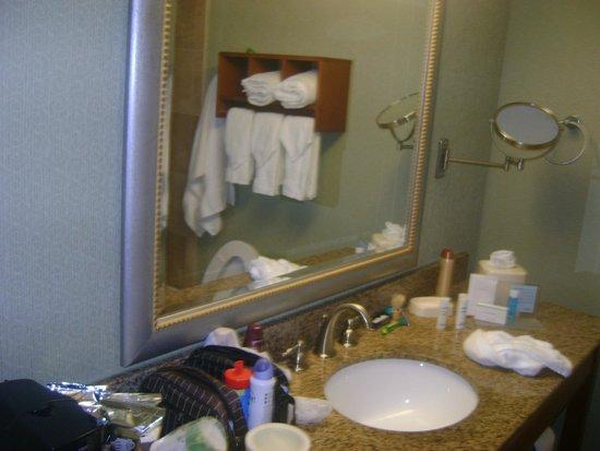 Hampton By Hilton Miami-Coconut Grove/Coral Gables: Banheiro