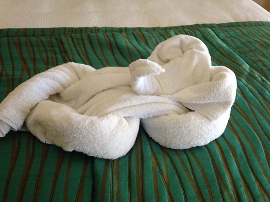 Pacific Terrace Hotel: elephant towel oragami from housekeeping