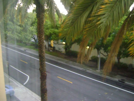 Hampton By Hilton Miami-Coconut Grove/Coral Gables : Visão Terceiro andar