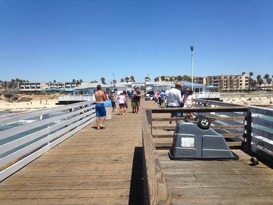 Pacific Terrace Hotel : pier near hotel...fishing allowed