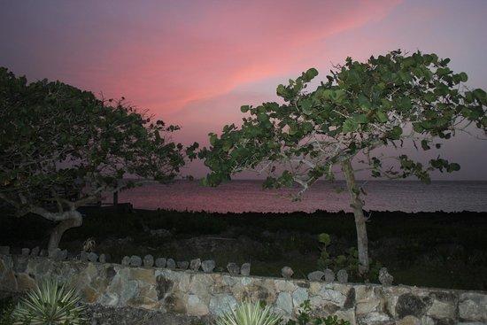 Seagrape Plantation Resort: .