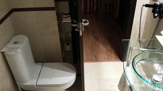 Hotel Centro Los Braseros : Baño visto desde dentro, lo malo es que hay que tener cuidado para no golpearse la pierna al ent