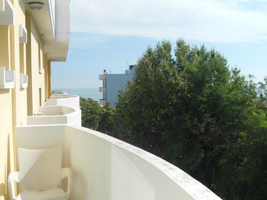 Park Hotel Serena: Vista dal balcone