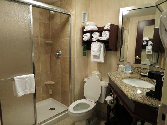 Hampton Inn Seattle Airport: Modern-looking bathroom