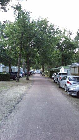 Camping l'Estanquet : Allée
