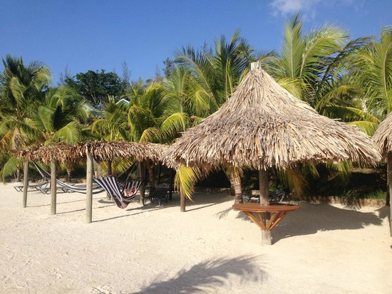 Turquoise Bay Dive & Beach Resort: Relaxing in the hammock