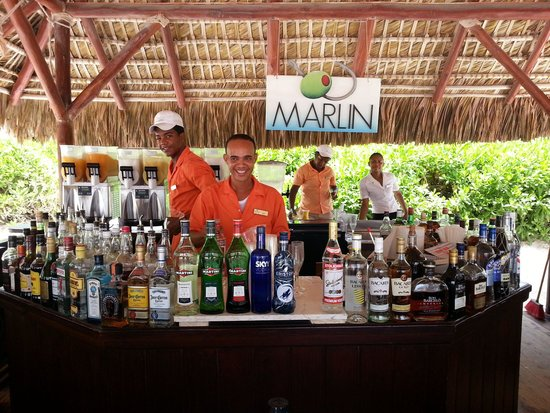 Secrets Royal Beach Punta Cana: Our favorite bar!