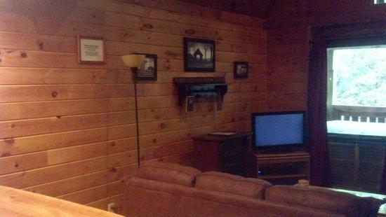 Getaway Cabins: main floor