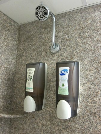 Best Western Plus Sandcastle Beachfront Hotel: shampoo and body wash
