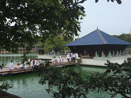 Temple bouddhiste de Gangaramaya : A huge group walking out after their prayer time