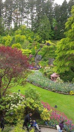 Butchart Gardens: The incredibly beautiful Sunken Garden