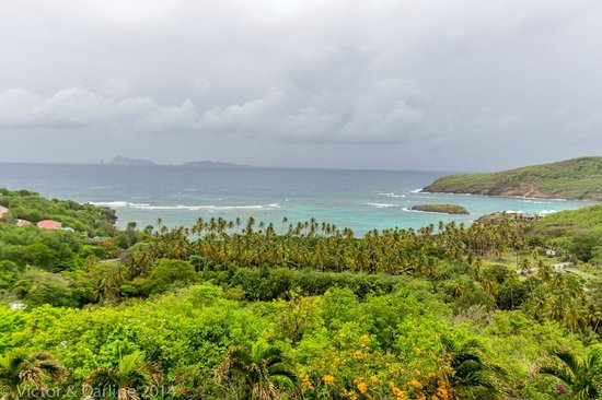 Sugar Reef Bequia : Sugar Reef from the French House view