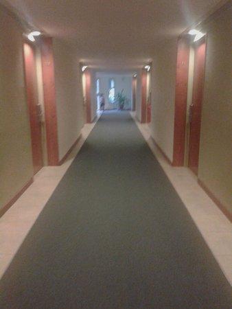 Raices Esturion Hotel: pasillo