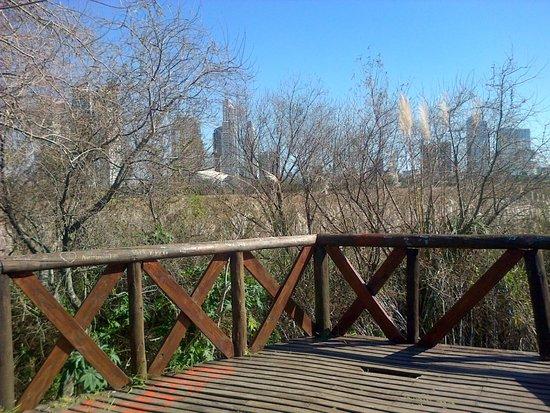 Reserva Ecologica: Miradores