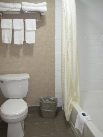 Best Western Summit Inn: Bathroom
