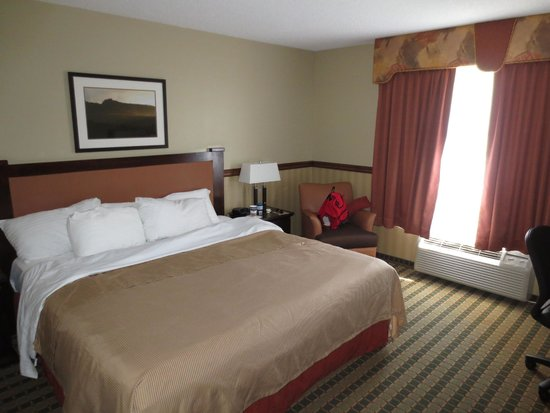 Best Western Diamond Inn : king bed, comfy chair and window