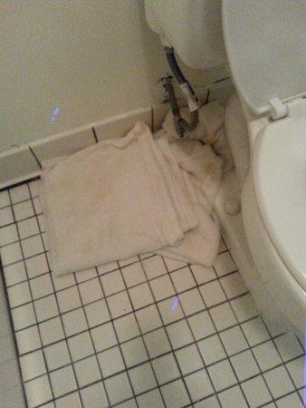 Bayshore Inn: wet towels