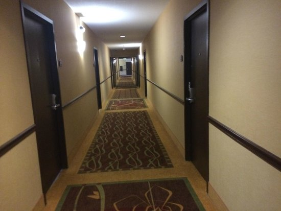 Rodeway Inn & Suites : Hallway.  No real issues.  Clean and orderly