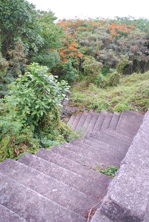 Ladder Bay : Erg ver naar beneden.