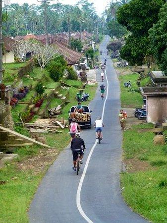 Bali Bintang Tour: Feel Bali....