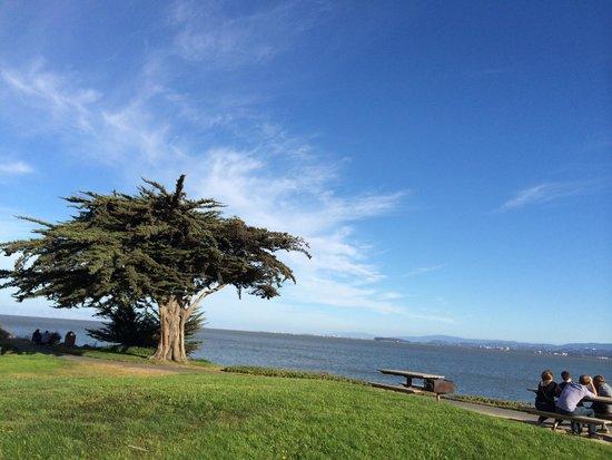 San Bruno Point Park: The point