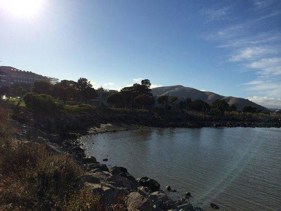 San Bruno Point Park: Nice view