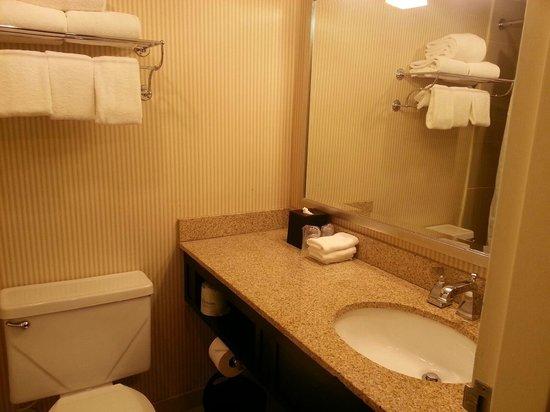 Sheraton Framingham Hotel & Conference Center: Updated bathroom