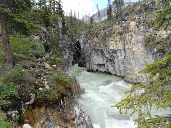 Marble Canyon: The Canyon