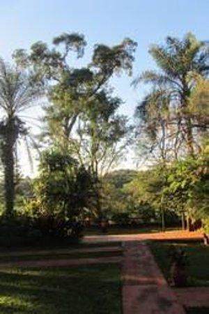 Guest House Puerto Iguazu: vista jardín