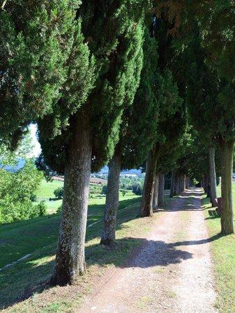 UNA Poggio Dei Medici : Depuis depart Vers trou 5