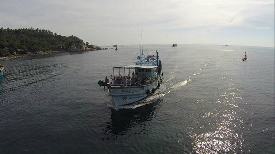 ACE Marine Expeditions