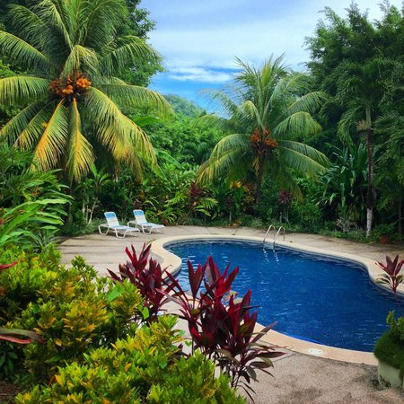 Star Mountain Jungle Lodge: Great warm water pool with Lounge Chairs