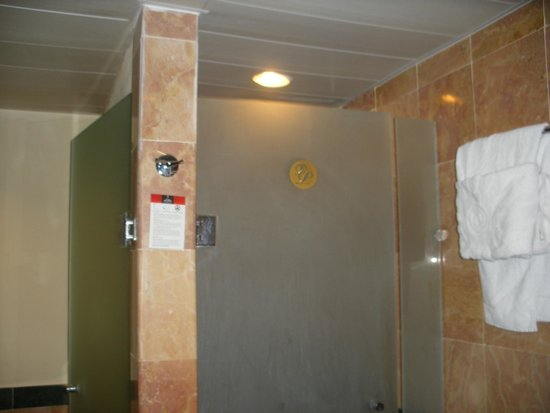 Luxury Bahia Principe Ambar Blue Don Pablo Collection: Dirty shower door and toilet door