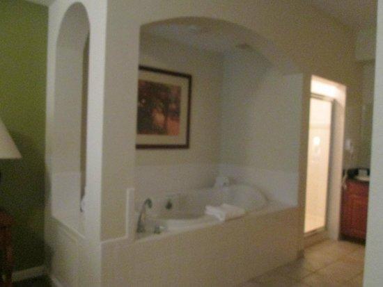 Lake Buena Vista Resort Village & Spa: 1st master
