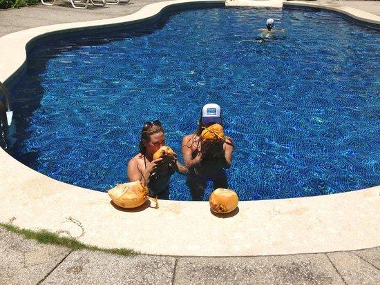 Star Mountain Jungle Lodge: Drinking fresh coconut water
