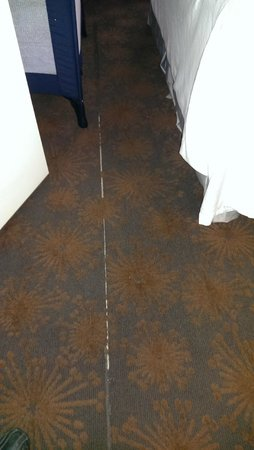 Best Western Plus Manhattan Beach Hotel: Damaged carpet