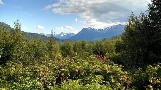 Wonderful mountain scenes foto di kenai national for Cabine del fiume kenai soldotna ak