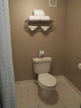 Best Western Yacht Harbor Hotel : Toilet