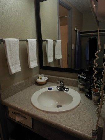 Best Western Yacht Harbor Hotel : Sink