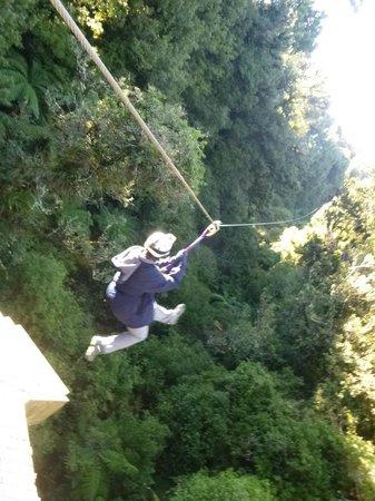 Rotorua Canopy Tours: Rotorua Canopy Tour