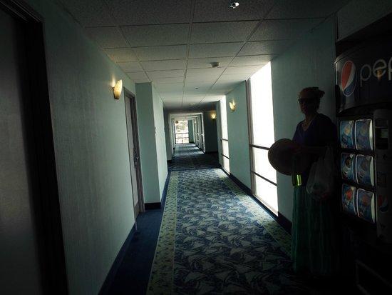 Best Western Yacht Harbor Hotel: Hallway