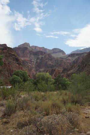 Phantom Ranch: views of canyon area