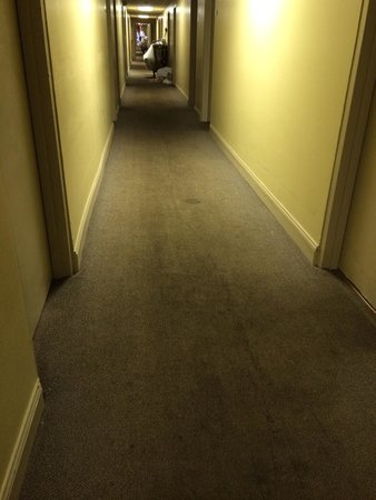 Red Roof Inn & Suites Muskegon Heights: Dirty hallways. Gross.
