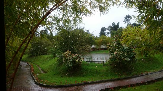 Kadkani River Resort: view from room.it's a den room