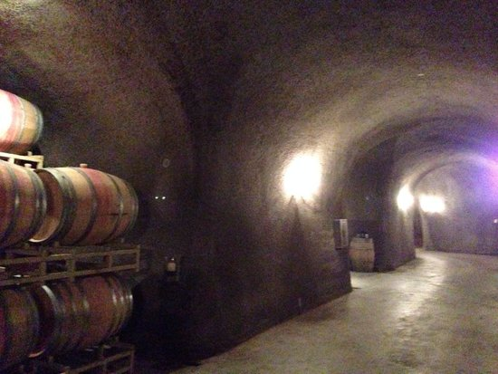 Rutherford Hill Winery: Cave tour!