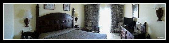 Hotel Riu Guanacaste : Room
