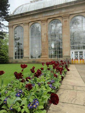 Royal Botanic Garden Edinburgh : casa de vidro